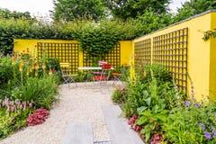 Färgrik trädgårds- design med den gula väggen arkivfoto