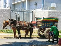 F?rgrik transportvagn i byn av San Felipe i Chile fotografering för bildbyråer
