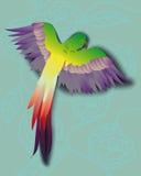 Färgrik tropisk papegoja Royaltyfri Fotografi
