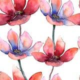färgrik tulpan Blom- botanisk blomma Seamless bakgrund mönstrar Textur för tygtapettryck royaltyfri illustrationer