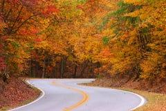 färgrik väg Fotografering för Bildbyråer