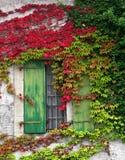 färgrik vägg Royaltyfria Bilder