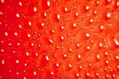 Färgrik vätskeliten droppebakgrund Fotografering för Bildbyråer