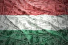 Färgrik vinkande ungersk flagga på en dollarpengarbakgrund Arkivfoton