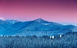 Färgrik vintermorgon i bergen Royaltyfri Bild