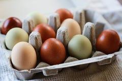 färgrika ägg Arkivbild