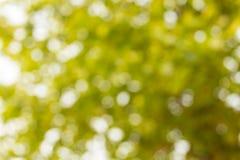 Färgrika Abstrack för bakgrund Royaltyfria Bilder