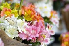 Färgrika Alstroemeriablommor En stor bukett av mång--färgade alstroemerias i blomsterhandeln säljs i form av en gåva bo royaltyfri foto
