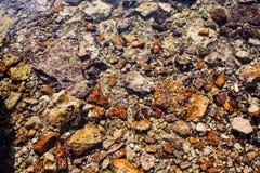 Färgrika apelsinstenar och vaggar i havsvatten Arkivfoto
