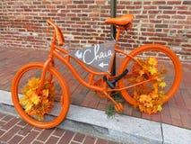 Färgrika Autumn Bicycle i Georgetown arkivbild