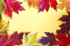 Färgrika Autumn Leaves Frame på gul bakgrund Royaltyfri Foto