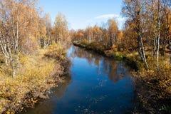 Färgrika Autumn River With i lösa trän Fotografering för Bildbyråer