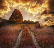 Färgrika Autumn Sunset arkivfoto
