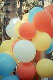 Färgrika ballonger i trädgård med pastellfärgad färg tonar Arkivbild