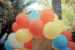 Färgrika ballonger i trädgård med pastellfärgad färg tonar Royaltyfria Bilder
