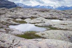 Färgrika bergplatser i Norge Härligt landskap av Norge, Skandinavien Norge berglandskap Arkivfoton