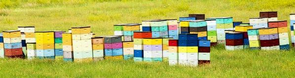 Färgrika bikupor av den rullande kullen av South Dakota, nära Cust fotografering för bildbyråer