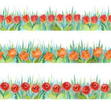 Färgrika blom- sömlösa gränser Ljus bakgrund - gräs och blommor vektor illustrationer