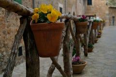 Färgrika blomkrukor på den typiska medelhavs- gatan Arkivbilder
