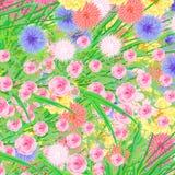 färgrika blommor Arkivbilder