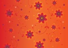 färgrika blommor för bakgrund royaltyfri bild