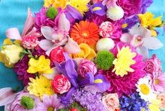färgrika blommor för bakgrund Royaltyfri Fotografi