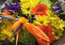 färgrika blommor för bukett arkivfoto