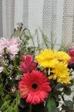 färgrika blommor för bukett royaltyfria foton