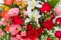 färgrika blommor för grupp Royaltyfria Bilder