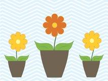 Färgrika blommor för vår i krukavektor Arkivfoton
