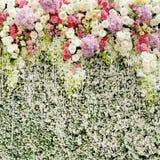 Färgrika blommor med den gröna väggen för att gifta sig bakgrunden Arkivfoto