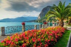 Färgrika blommor och imponerande föreställning parkerar, sjön Como, den Lombardy regionen, Italien royaltyfri bild
