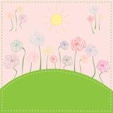 Färgrika blommor på ängen under solen Royaltyfria Foton