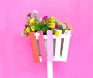 Färgrika blommor på korgen Arkivfoto