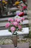 Färgrika blommor som vilar på en grav royaltyfri bild