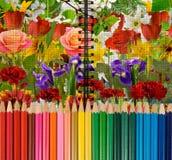 färgrika blyertspennor på blommabakgrundsnärbild arkivfoto