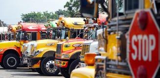Färgrika bussar fotografering för bildbyråer