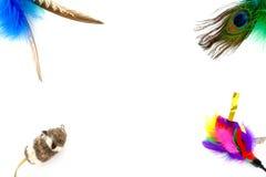 Färgrika Cat Toys som bakgrundsram Arkivbild
