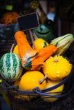 Färgrika dekorativa pumpor, kalebasser och squashar i marknaden Arkivbild