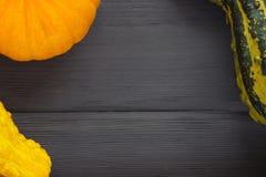 Färgrika dekorativa pumpor på trä, ställe för tex Royaltyfria Bilder