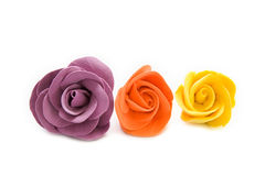 färgrika dekorativa ro Royaltyfri Fotografi