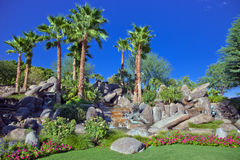Öken trädgårds- Palm Spring royaltyfria bilder