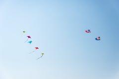 Färgrika drakar på den blåa skyen Royaltyfri Foto