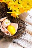 Färgrika easter ägg i ett rede med gula narcis Fotografering för Bildbyråer
