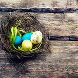 Färgrika easter ägg i ett rede på träbakgrund Royaltyfria Foton