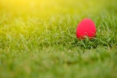 färgrika easter för bakgrund ägg ferie easter bakgrund Royaltyfri Bild