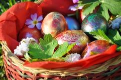 färgrika easter för korg ägg Royaltyfria Bilder