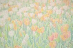 färgrika fältblommor härlig paper fototappning för bakgrund Royaltyfria Foton