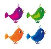 färgrika fåglar Arkivfoto
