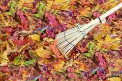 färgrika fallleaves för bakgrund Royaltyfria Foton